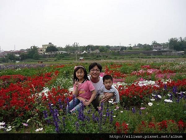 20100411台中花海19
