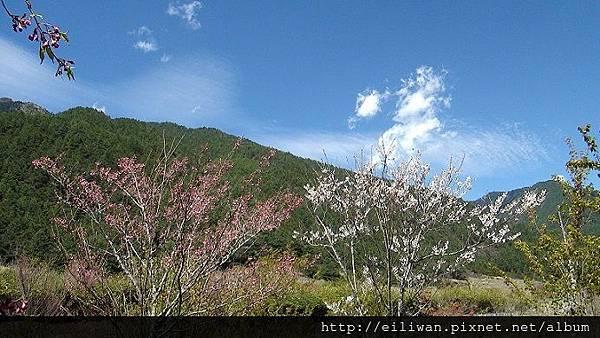 20120304武陵369