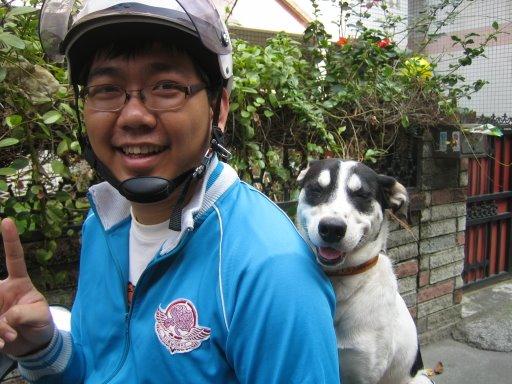 我是愛微笑的狗~丁丁-2