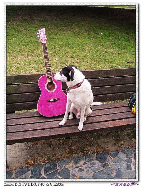 (11) 阿狗與吉他的對話.jpg