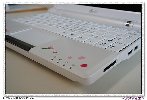 14 櫻花也飛到鍵盤上了~.jpg