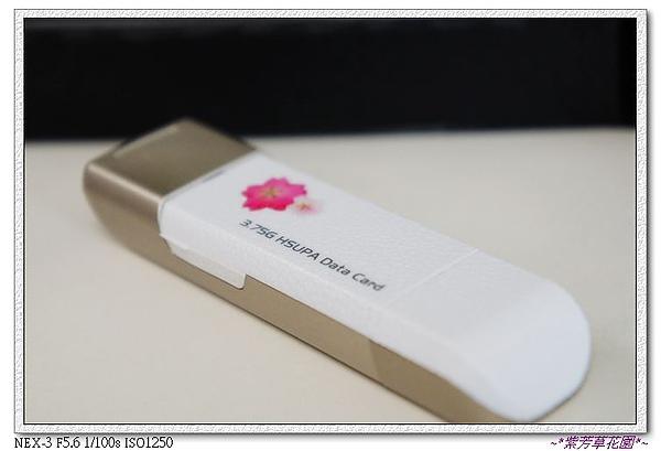 28 哇~小櫻花也飄到網卡上了耶!.jpg