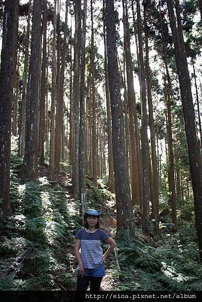 2013-11-09-吻吻露營區-阿甘露營車隊047.jpg
