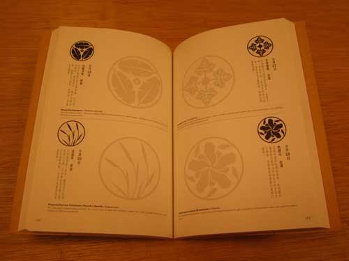 20111008_青田七六366_03