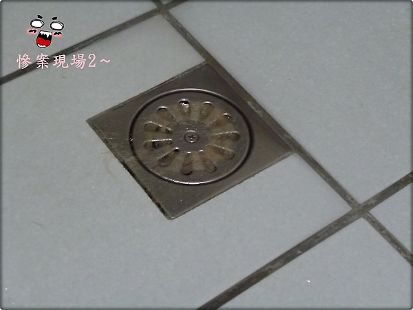 P1010178.JPG