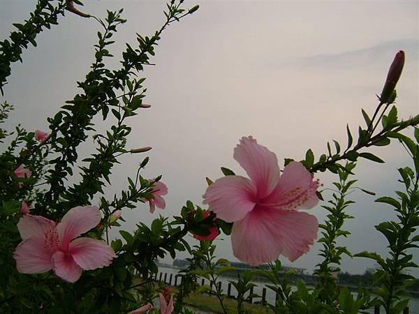 06.08.21 林默娘公園