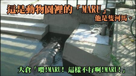 KMP-DVD[(008838)15-11-38].JPG