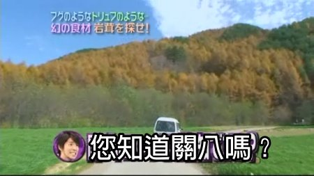 CanJani-20081206夢幻食材岩茸[(014584)23-54-03].JPG