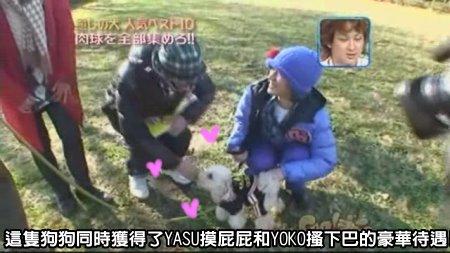 Can!Jani-20090228犬の人気ベスト10の肉球を集めろ![(012463)02-11-01].JPG