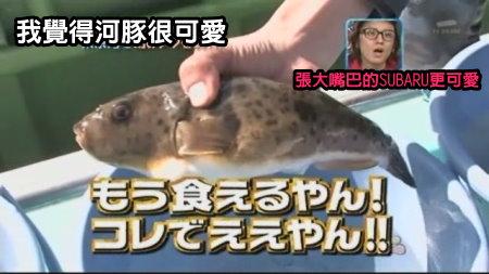 Can!Jani-20090328釣赤目河豚[(028851)01-08-40].JPG