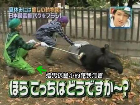 090808 Can!ジャニ 動物園勞動體驗[(008055)00-11-48].JPG