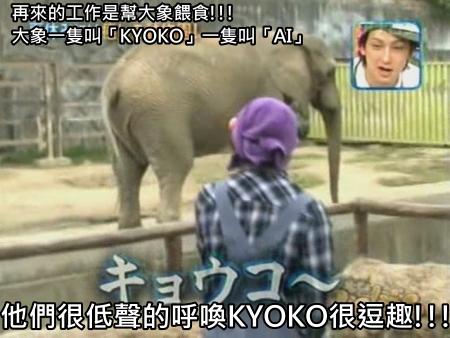 090808 Can!ジャニ 動物園勞動體驗[(010485)00-13-23].JPG