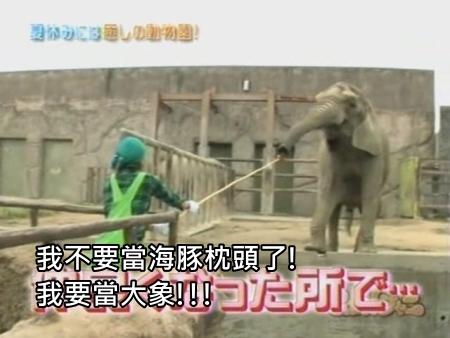 090808 Can!ジャニ 動物園勞動體驗[(011040)00-13-51].JPG