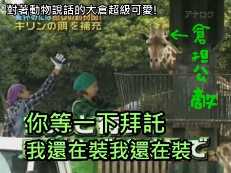 090808 Can!ジャニ 動物園勞動體驗[(018677)00-19-04].JPG
