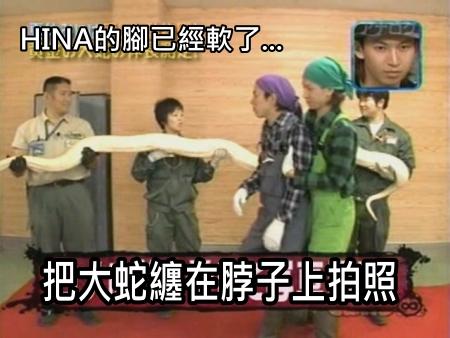 090808 Can!ジャニ 動物園勞動體驗[(030936)00-26-42].JPG