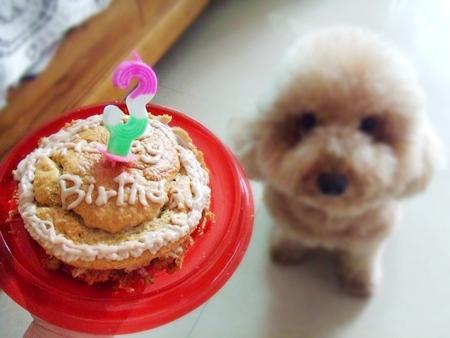 3歲囉!生日快樂!
