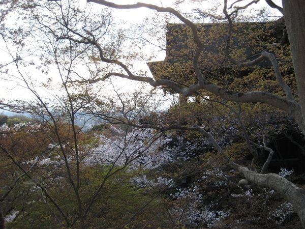 日本關西照片 314.jpg