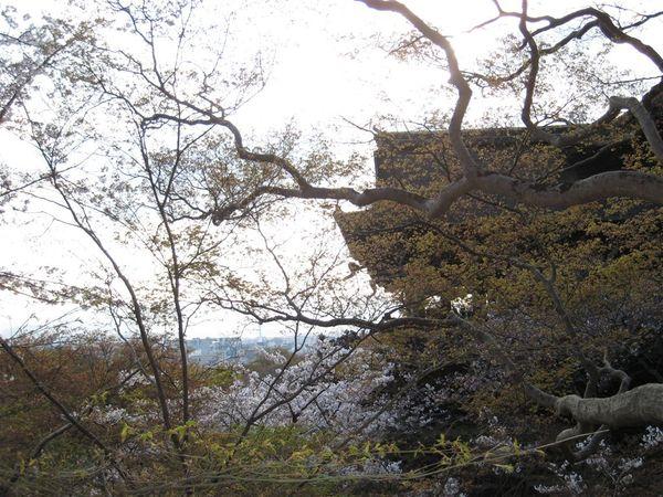 日本關西照片 315.jpg