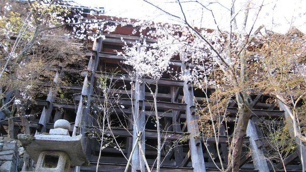 日本關西照片 327.jpg