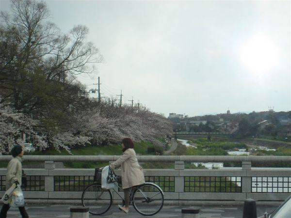 日本關西照片 348.jpg