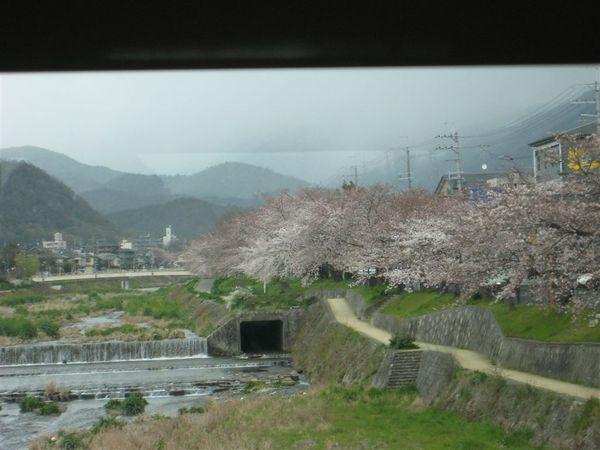 日本關西照片 349.jpg