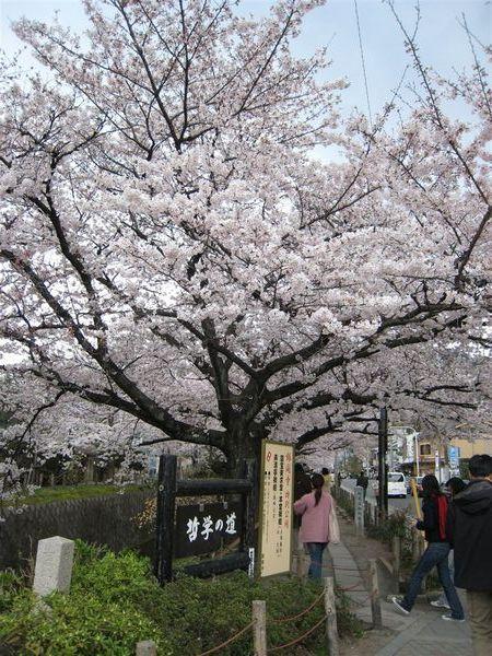 日本關西照片 350.jpg