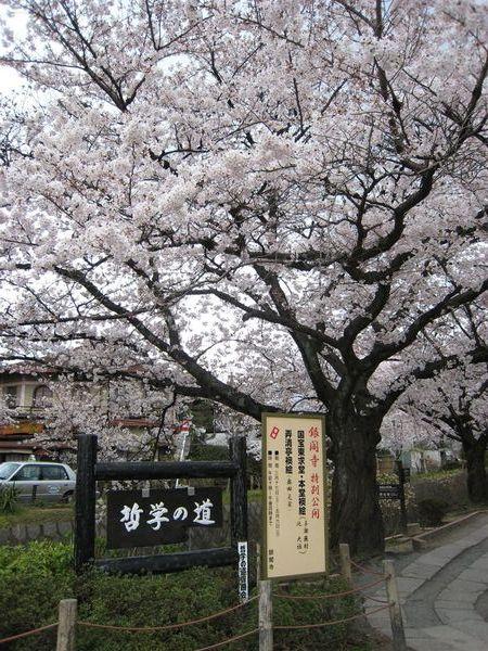 日本關西照片 352.jpg