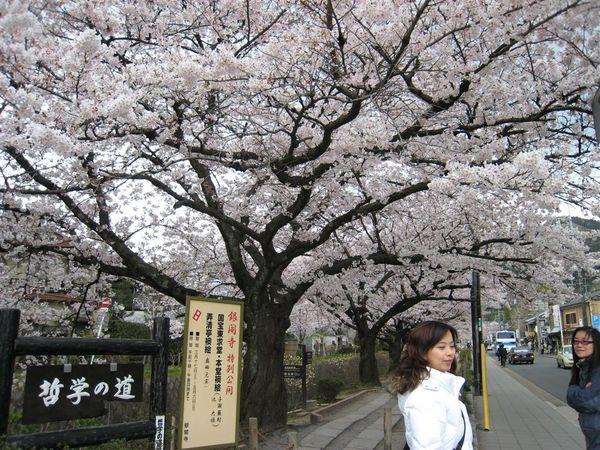 日本關西照片 353.jpg
