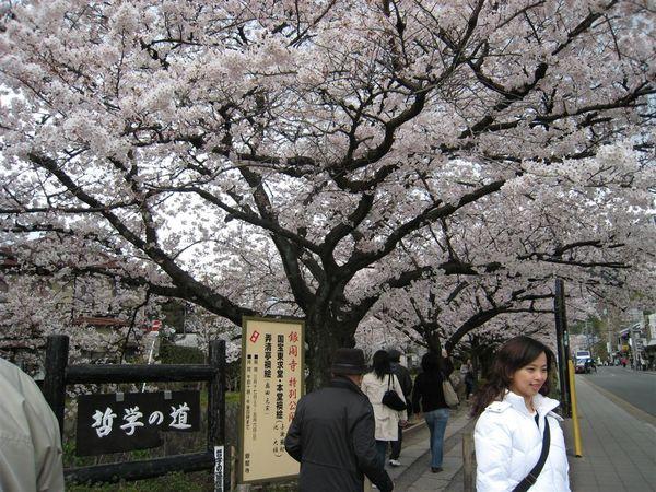 日本關西照片 354.jpg