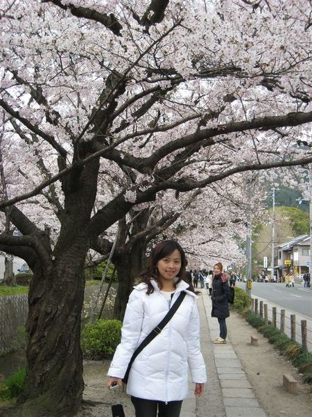 日本關西照片 360.jpg