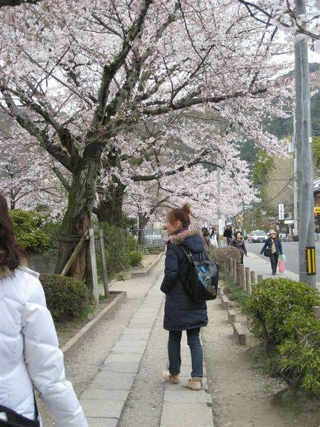 日本關西照片 361.jpg