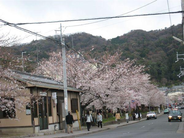 日本關西照片 366.jpg