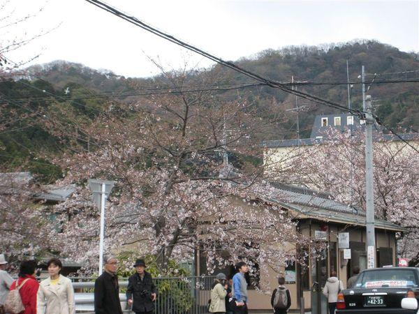 日本關西照片 369.jpg