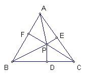 a010-1.jpg