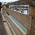 漁人碼頭看海獅