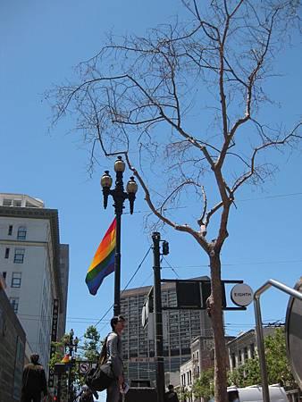 到處都是彩虹旗