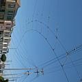 複雜的電軌天線