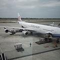 齁齁,那是我們飛機