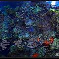 nEO_IMG_P8093200.jpg