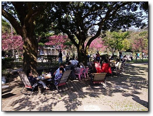 前山公園2
