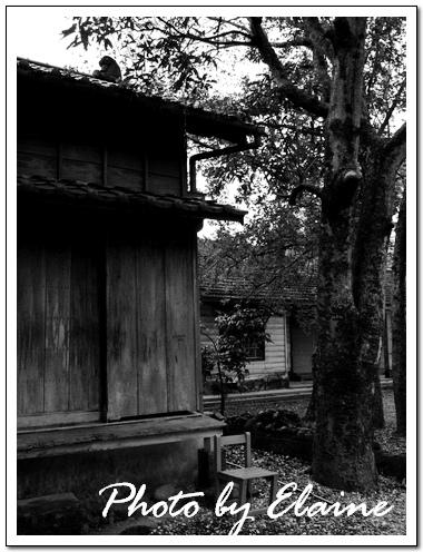 龍田國小日式宿舍