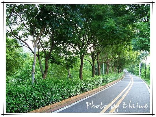 東豐綠廊1