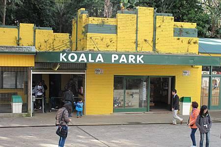 1-2014.06.15-koala park (9)