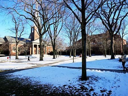 2016-01-哈佛(Harvard University)  (5).jpg