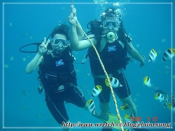 DSC03738體驗潛水.jpg