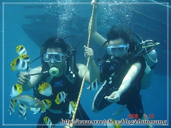 DSC03733體驗潛水.jpg