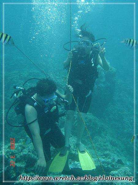 DSC03749體驗潛水.jpg