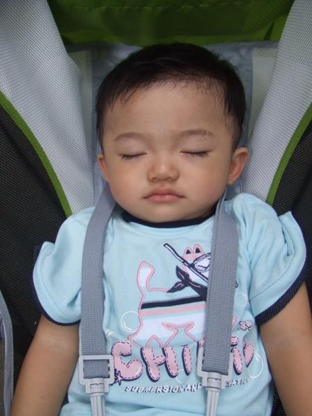 JJ睡的超熟, 怎麼弄他都還是繼續睡囉!