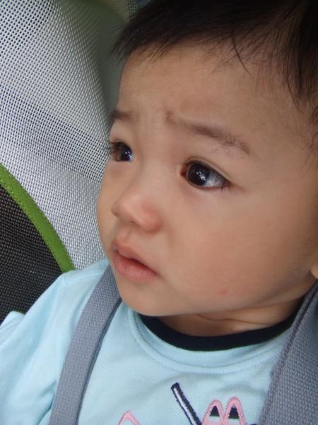 JJ醒囉! 奇怪? 這是哪裡呀? 我怎麼在推車裡睡覺呢? 大家幹嘛圍著我呀?!