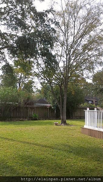 2012-11-22 10.13.45.jpg